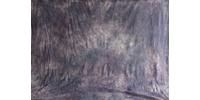 Фон тканевый TI W-028 ( 300х500см )