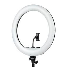 Осветитель кольцевой Falcon Eyes BeautyLight 480RC LED