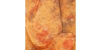 Grifon W-094 фон пятнистый цвета грейпфрута 2,7х5 м