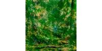 Grifon W-314 фон пятнистый зеленый с желтыми и голубыми разводами 2,7х5 м